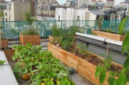 Les plus beaux jardins de toit à Paris