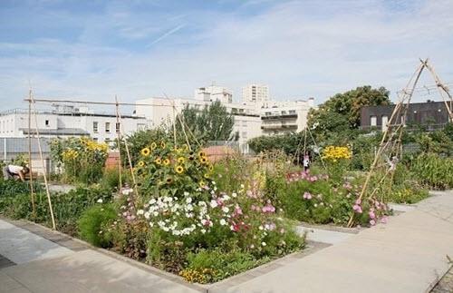 D couvrez les plus beaux jardins de toit de paris for Plus grand jardin de paris