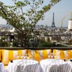 Focus sur le Perruche, un restaurant unique de Paris